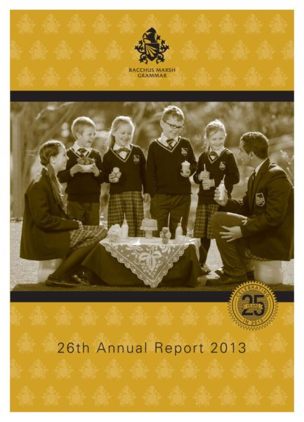 BMG 2013 Annual Report